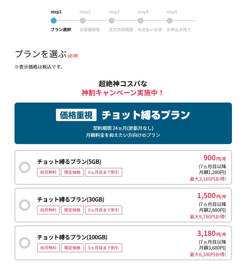 トマラナイWi-Fiの申込み画面
