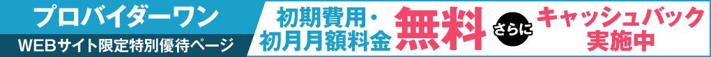 プロバイダー・ワン VISION WiMAX 特別キャンペーンサイト